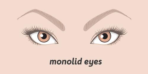 Monolid Auge